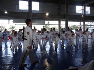 Taekwondo - ATA Pedra Branca