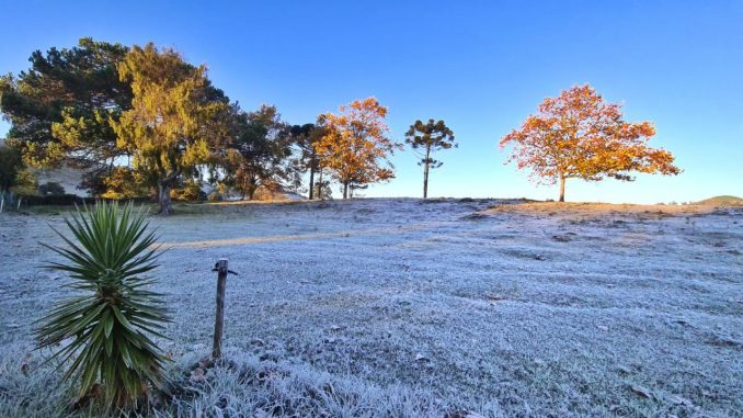 Temperaturas caem abaixo de zero mudando as paisagens da Serra Catarinense